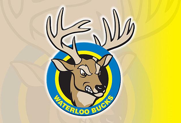 LOGO-Waterloo-Bucks-Yellow_630x430