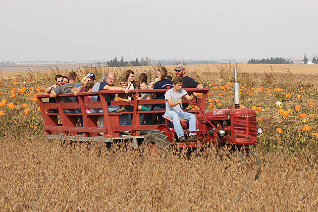 Enjoy a hayride at Barn Stahl Famrs (Photo: Bucky Doren)