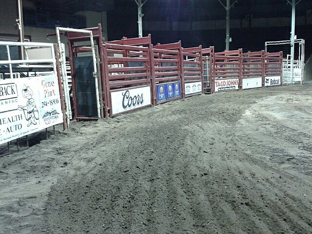 Bull Riding Classic (Photo: Bucky Doren)